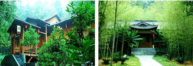 蔡甸天下风景图片